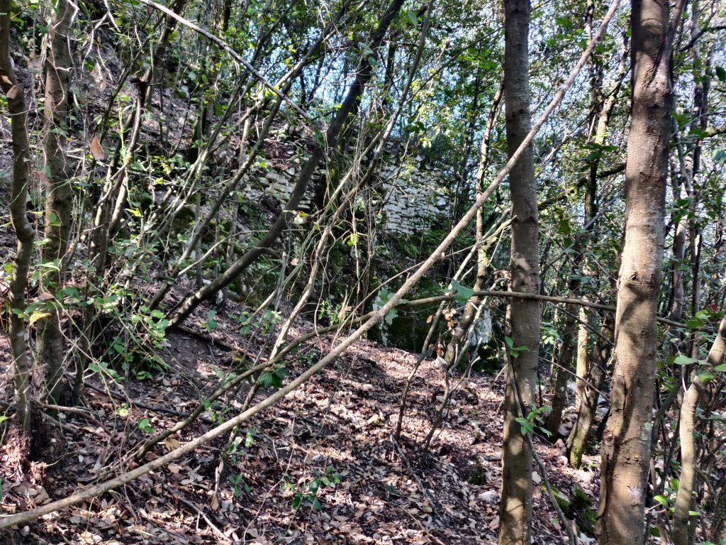 Rocca Accarina, prime tracce nel bosco